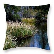 Nature Walk 2 Throw Pillow