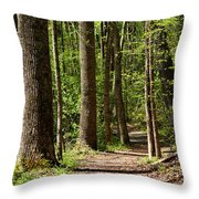 Nature Walk Early Spring Throw Pillow