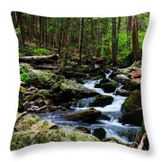 Nature Walk Throw Pillow