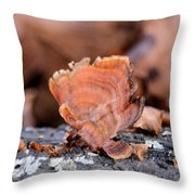 Nature's Abstract 4 Throw Pillow