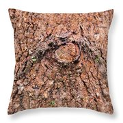 Nature's Abstract Eye Throw Pillow