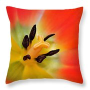 Nature's Amazing Colors Throw Pillow