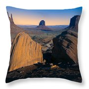 Nature's Architecture Throw Pillow