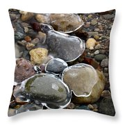 Nature's Artwork 2 Throw Pillow