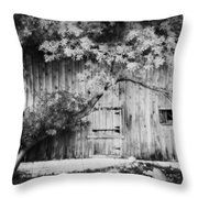 Natures Awning Bw Throw Pillow