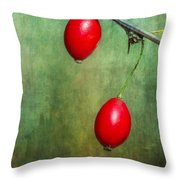 Nature's Baubles Throw Pillow