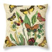 Natures Beauty-no.1 Throw Pillow