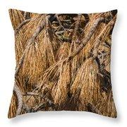 Nature's Brooms Throw Pillow