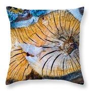 Nature's Calendar Throw Pillow