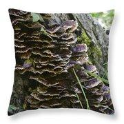 Nature's Castles Throw Pillow