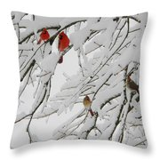 Nature's Christmas Ornaments Throw Pillow