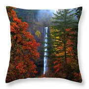Nature's Color's Throw Pillow