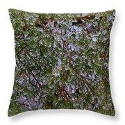 Natures Crystals Throw Pillow