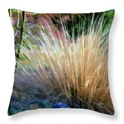Nature's Desert Abstract Throw Pillow