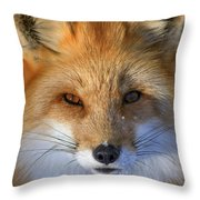 Nature's Eyes Throw Pillow