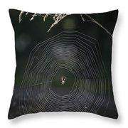 Natures Fabrics Throw Pillow