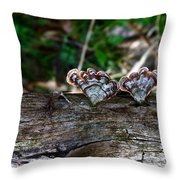 Natures Fantasy Fans Throw Pillow