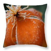 Natures Frost Throw Pillow