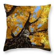 Nature's Gold Throw Pillow