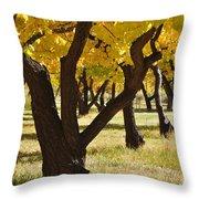 Natures Gold Throw Pillow