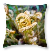 Natures Knot-how To Twist Throw Pillow