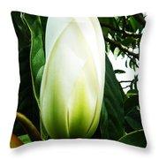 Nature's Light Bulb Throw Pillow