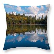Natures Mirror Throw Pillow