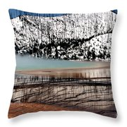 Nature's Mosaic I Throw Pillow