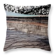 Nature's Mosaic II Throw Pillow