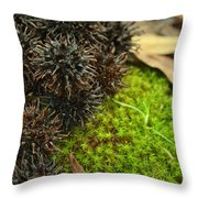 Nature's Moss And Sweetgum Pods Throw Pillow