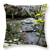Nature's Mossy Boulders Throw Pillow
