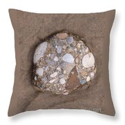 Nature's Nautical Art Throw Pillow