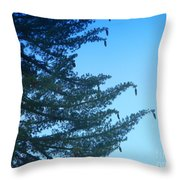 Natures Ornaments Throw Pillow
