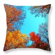 Nature's Pallete 1 Throw Pillow