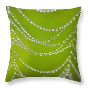 Natures Pearls  Throw Pillow