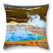 Nature's Perfection Throw Pillow