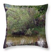 Nature's Pond Throw Pillow