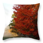 Nature's Red Highlights Throw Pillow