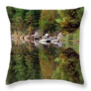 Natures Reflection Throw Pillow by Mark Papke