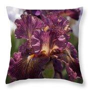 Nature's Ruffles Throw Pillow