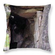 Nature's Sandstone Canopy Throw Pillow
