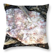Nature's Simple Arrangement Throw Pillow