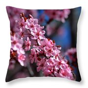 Nature's Stained Glass Throw Pillow