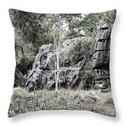 Nature's Statues  Throw Pillow