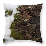 Nature's Still Life Throw Pillow