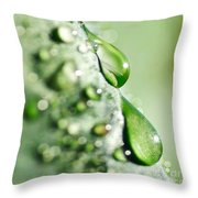 Nature's Teardrops Throw Pillow
