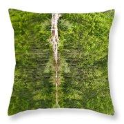 Natures Totem Throw Pillow