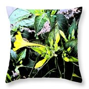 Nature's Trumpet Throw Pillow