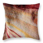 Nature's Valentine Throw Pillow