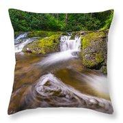 Nature's Water Slide Throw Pillow